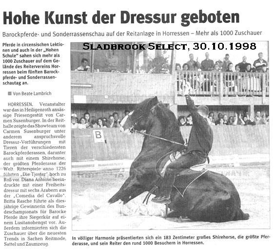 Der charismatische <b>Shire Horse Zuchthengst</b> SLADBROOK SELECT, am 30. Oktober 1998, in seiner letzten öffentlichen Präsentation.